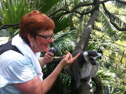Amy making friends with a lemur