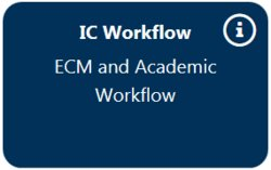 IC Workflow