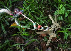 Lost keys in the grass