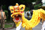 A Chinese dragon follows the parade down Cayuga Street.