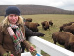 Amanda with the buffalo