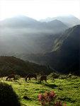 View from La Cumbre