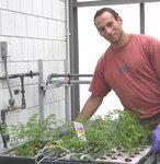 Julian Halfmann (Env. Sci. '08) tending his carrots for heavy metal remediation project.