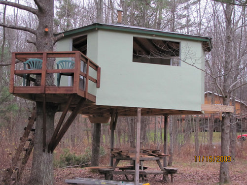 The Pfaff Treehouse Thomas J Pfaff Ithaca College