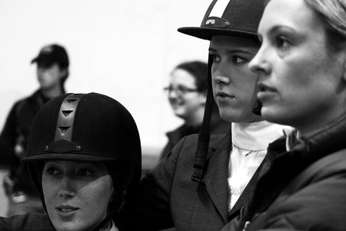 Alfred University Horse Show The Equestrian Team