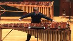 Anthony DiBartolo - marimba