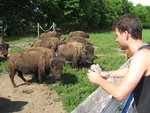 Alex communes with the buffalo