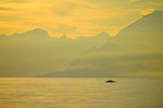 A trio of rowers outlined by the sun rising over the Swiss Alps on a misty Lake Geneva.