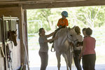 Tina Caswell, Maritsa Sherenian, and team prepare a child for a ride.