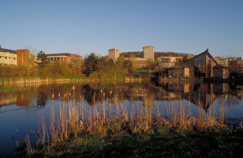 Campus Scenics Ithaca In Photos Ithaca College Math Wallpaper Golden Find Free HD for Desktop [pastnedes.tk]