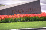 A flourish of tulips at the west entrance