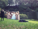 bride falling in central park group photo