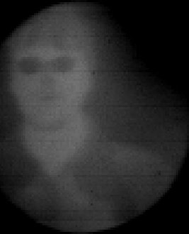 An infrared image of the author taken with FORCAST in the lab at DAOF.