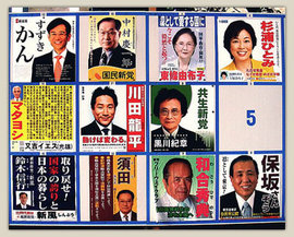 An official election poster display board in Japan (2009) (http://www.peterpayne.net)