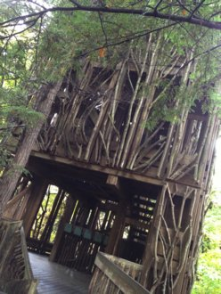 Cayuga Nature Center Tree House