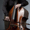 Double Bass (Classical and Jazz)