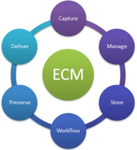 Enterprise Content Management Logo