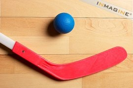 Floor Hockey League
