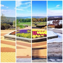 Four Seasons at IC