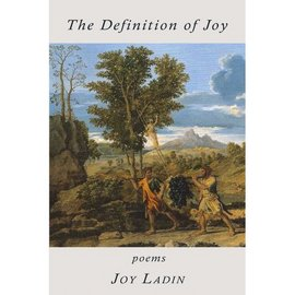 Front cover of Definition of Joy