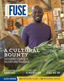 Fuse 2015.1 Spring cover