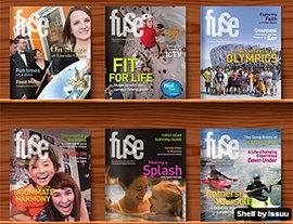 Fuse shelf