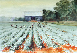 """Gray Barn Berry Field"" by Bruce North"
