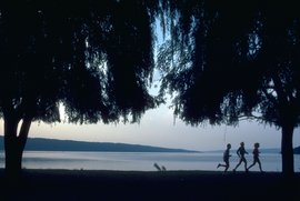 Ithaca, NY, boasts a number of state and local parks. Here, joggers enjoy the view at Stewart Park, located at the southern tip of Cayuga Lake.