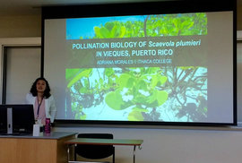 Junior Adriana Morales presents her research on pollination at NCUR. (Photo courtesy of Adriana Morales)