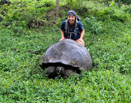 Laurel Maley '17 saw Galapagos Giant Turtles while studying abroad in the Galapagos Islands. Photo submitted.