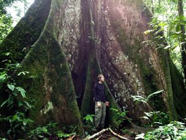 Lewis Kendall '14 in the rain forest of Ecuador