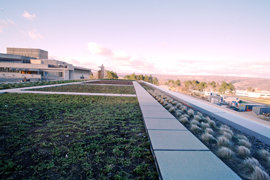 Looking west across the �green roof� of the new School of Business building