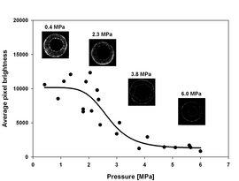 MRI vulnerability Curve