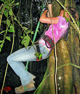 Sarah Brylinsky '09, seen here climbing a tree in Equador, won the AASHE Student Sustainability Leadership Award.