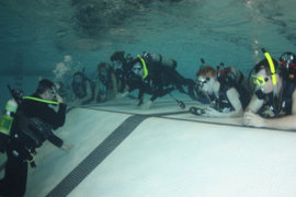 Scuba Diving with Certification