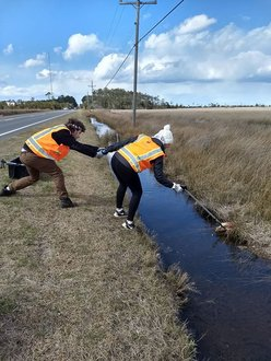 Students clean refuse from a waterway