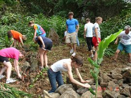 Students help rebuild an ancient stone wall in Hawaii