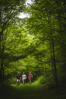 Students hiking in IC's Natural Lands