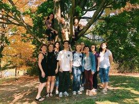 Team Fall 2016