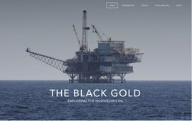 The Black Gold by Nicole Defranc and Katrine Skipper