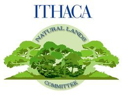 This Ithaca College Natural Lands Emblem was created by Julie Gutman '07.  Gutman won the emblem contest held by ICNL in fall 2006.