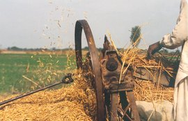 manual thresher