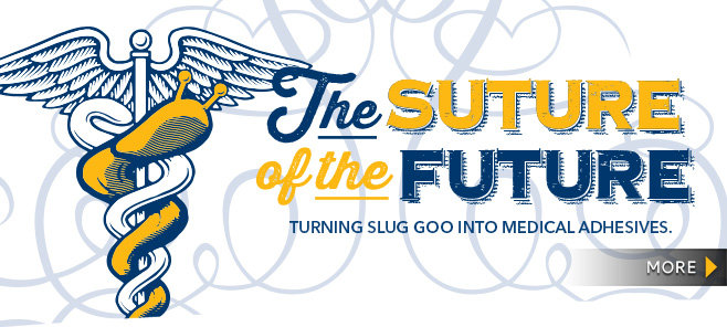 Suture of the Future