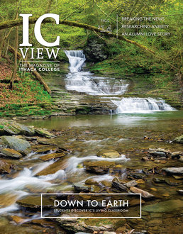 ICView 2014/2 cover