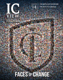 ICView 2014.3 Winter cover